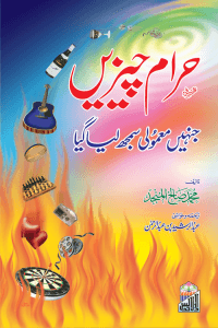 Haram Chezain (Jinhen Mamoli Samjh Liya Giya)